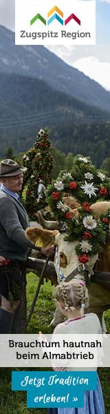 Brauchtum hautnah beim Almabtrieb in der Zugspitzregion