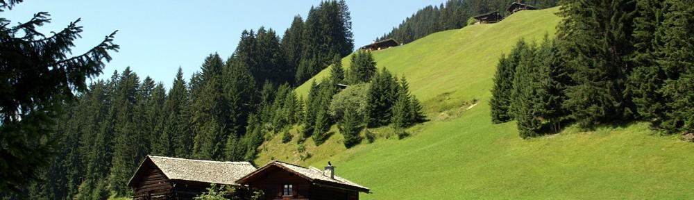 Berghütte Montafon