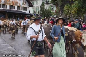 Viehscheid Hohenschwangau 02