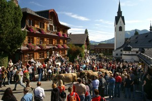 Alpabtrieb in Schwarzenberg, Bregenzerwald, Vorarlberg
